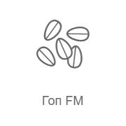 Record Гоп FM